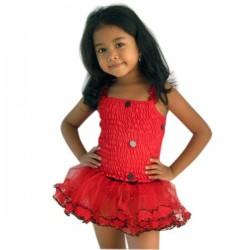 Lady Bug Fairy Dress