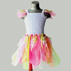 Organza Fairy Dress